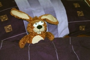 stuffed-animal-240695_1280